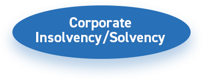 Corporate Insolvency Solvency